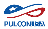 puloon logo